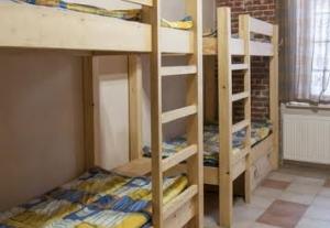 Shelter Hostel