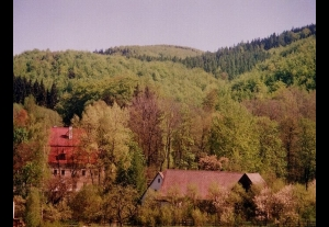 Leśny Dwór - Waldgut