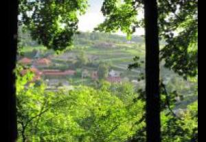 Agroturystyka Panorama