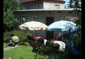 domek w Sopocie