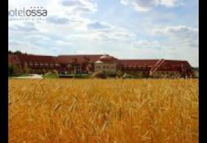 Hotel Ossa Congress & SPA