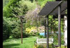 Wzgórze Magnolii
