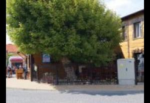 Dom Wczasowy Zefirek