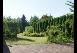 Villa Dobra