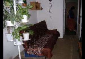 Pokój Gościnny Misztal Małgorzata